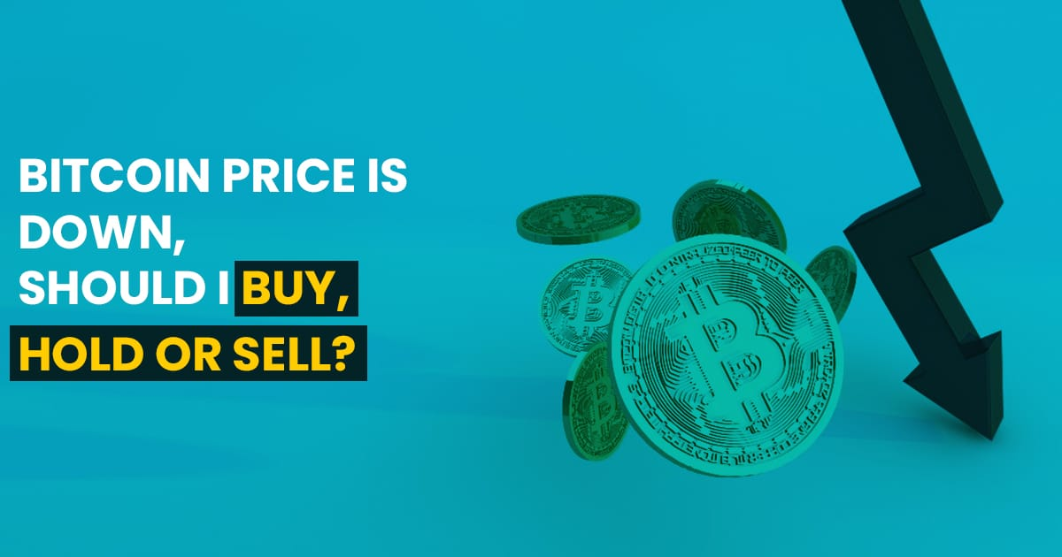 Bitcoin Price is Down, Should I Buy, Hold or Sell